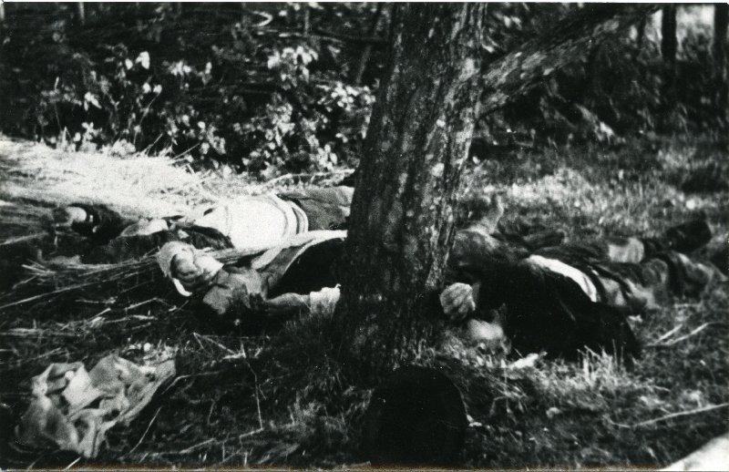 Ofiary pacyfikacji wsi Lipnik i Wiśniowa, pow. myślenicki, 12-18 IX 1944 r. [ze zbiorów IPN].