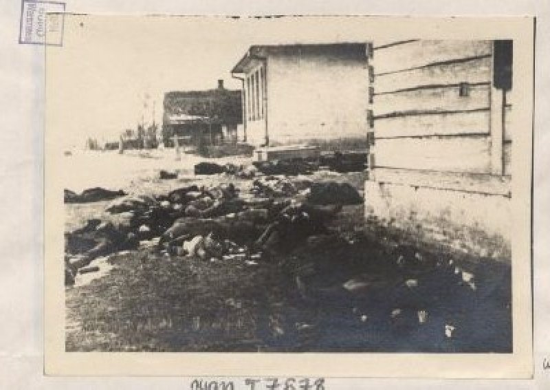 Pacyfikacja wsi Sochy, powiat Biłgoraj, 1 VI 1943 r. [ze zbiorów IPN].