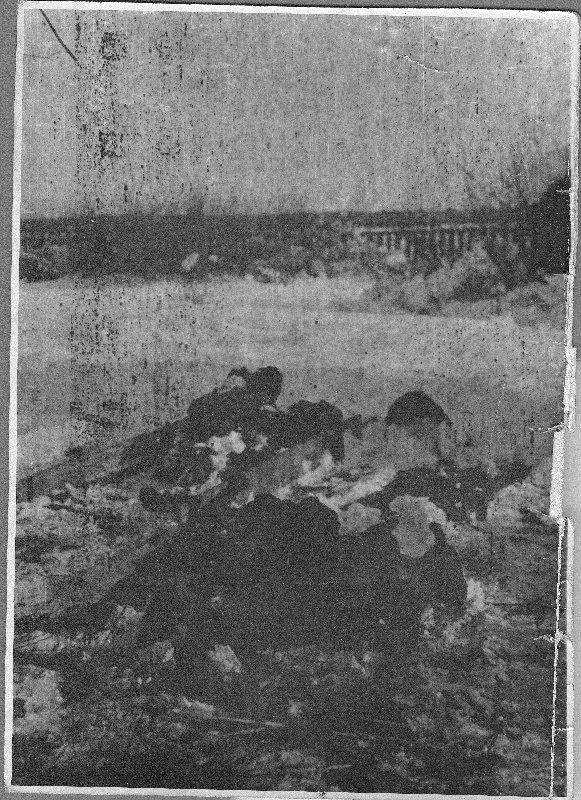Pacyfikacja wsi Borów gm. Annopol, 2 II 1944 r. [ze zbiorów Mauzoleum w Michniowie].