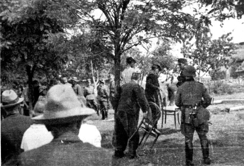 Wieszanie na drzewie jednego z zatrzymanych Polaków, Dmenin, pow. radomszczański, b.d. [ze zbiorów IPN].