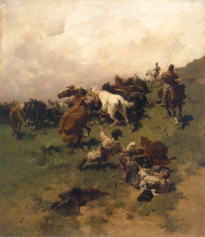 Chwytanie konia na arkan