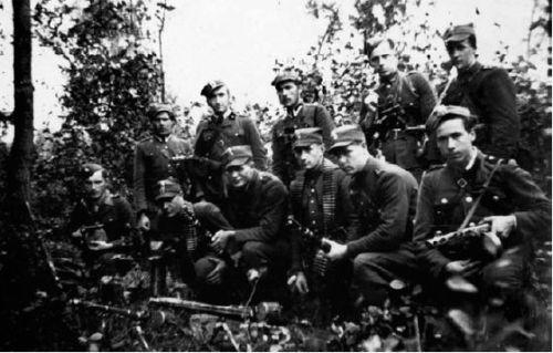 Żołnierze ''Roja''