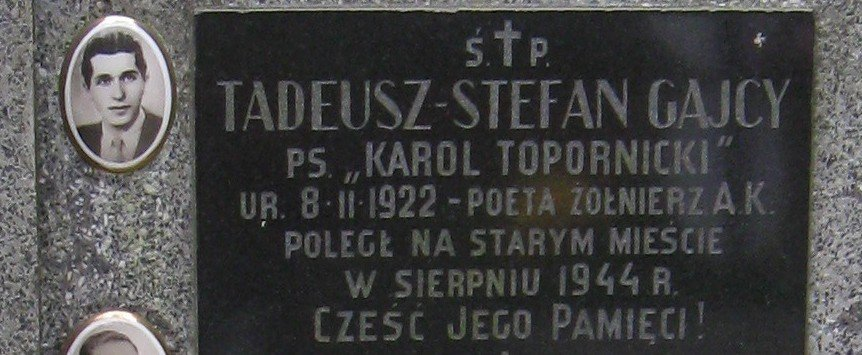 tadeusz-gajcy