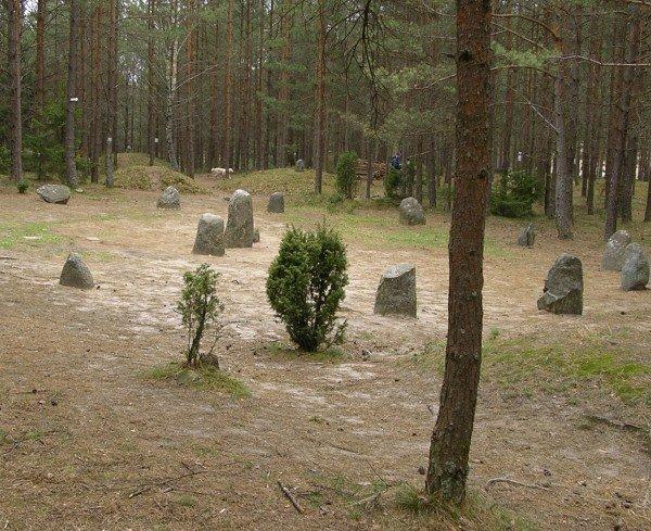 źrodło foto: mmtrojmiasto.pl