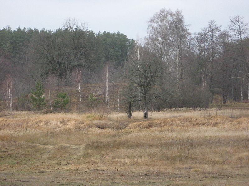 wał w rejonie korosteńskim