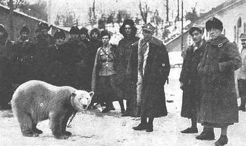 Żołnierze Oddziału Murmańskiego z maskotką  – niedźwiedzicą polarną o imieniu Baśka Murmańska – zdjęcie wykonano po powrocie do Polski w Twierdzy Modlin