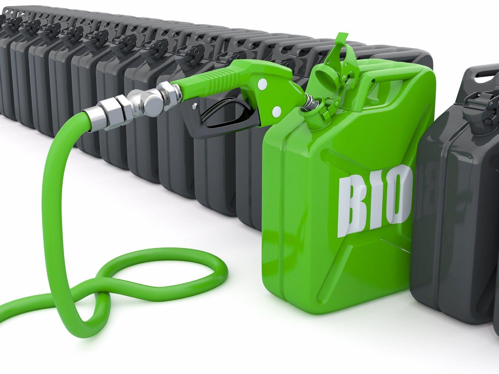 UE uderza w polskie biopaliwa