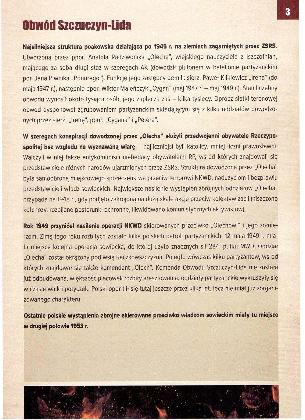 zdj-4.jpg