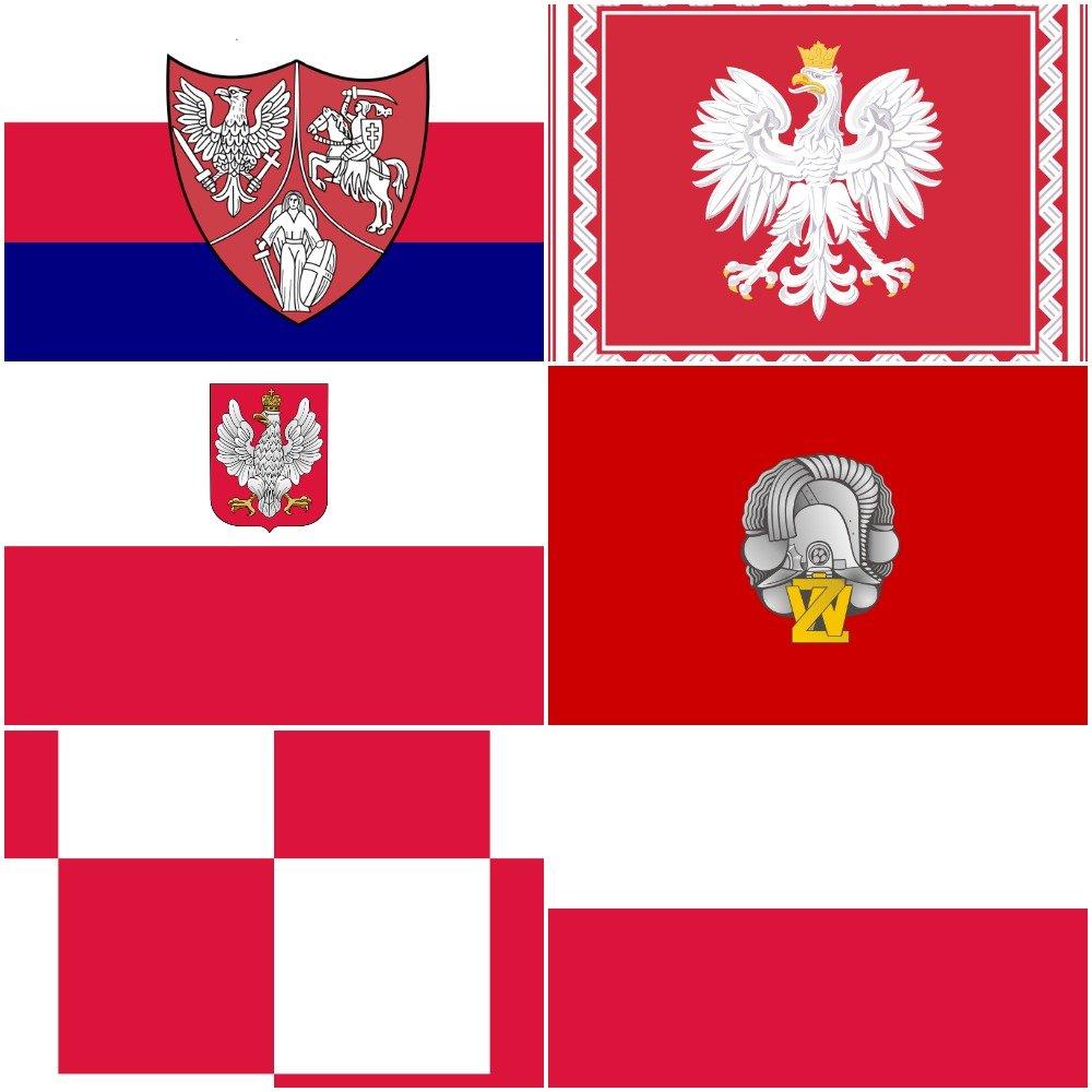 Oto Polskie Flagi Dzisiaj I W Przeszłości Galeria