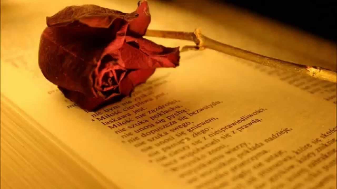 Hymn O Miłości Choćbym Mówił Językami Ludzi I Aniołów A
